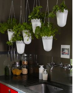 View of SKURAR hanging planters filled with herbs above kitchen sink.