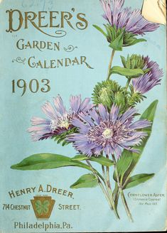 Dreer's garden calendar : 1903