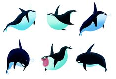 ORCAS SKETCHES on Behance