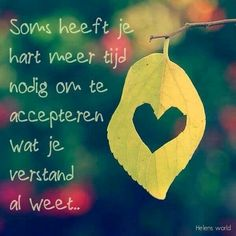 Sometimes your heart needs more time to accept what your mind already knows (Dutch)