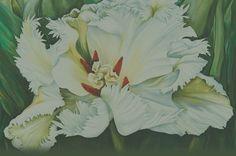 Skagit Tulip | Calendar