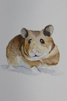 original watercolor painting hamster painting by paintingbyZofiaL