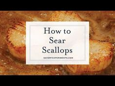 Pan Seared Scallops at home are easy to make. Learn how to prevent your scallops from sticking and get restaurant quality crust every time! Seafood Casserole Recipes, Lobster Recipes, Seafood Recipes, Appetizer Recipes, Fried Shrimp Recipes, Fish Recipes, Baby Food Recipes, Cooking Recipes, Halibut Recipes