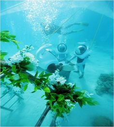 Bora Bora Underwater Wedding by Topdive Romantic Honeymoon Destinations, Honeymoon Places, Underwater Wedding, Bora Bora Resorts, Wedding Ceremony, Wedding Day, Honeymoon Planning, Beach Wedding Decorations, Planner Decorating