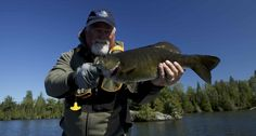 Bill Spicer and a trophy Smallmouth Bass caught at Fireside Lodge while filming our TV show for The New Fly Fisher. Watch the show at https://www.youtube.com/user/FiresideLodgeFish