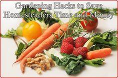 15 Smart Gardening H
