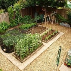 Amazing Backyard Vegetable Garden Design Ideas For Inspiration ~ Get ideas for creating an amazing garden, including planting tips & gardening trends. Experts share advice for small gardens. Small Vegetable Gardens, Veg Garden, Garden Types, Small Gardens, Outdoor Gardens, Vegetable Gardening, Organic Gardening, Vegetables Garden, Veggie Gardens