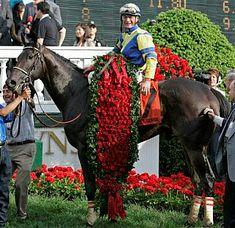 Street Sense - Kentucky Derby Winner 2007     In my opinion, one of the best races ever run .