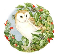 The Barn Owl by Sheila Mannes-Abbott