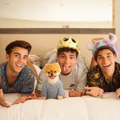 with my friends 😀💕 👑 Animals Of The World, Animals And Pets, Most Instagram Followers, Jiff Pom, Sebastian Villalobos, Guinness World, 3rd Baby, Gay Couple, Pomeranian
