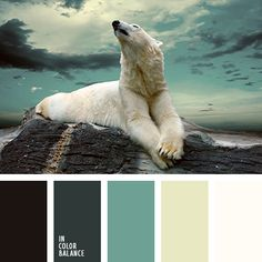 The restrained and noble color palette in cold tones. Paints, symbolizing calmness, coolness and serenity. The combination of light and dark shades looks stylish and impressive. Black, dark green - mysterious, somber colors. They soften the pastel gamma - gray-green, milk and white. Such a composition is good for design spacious rooms in which a lot of sun.
