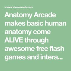 Anatomy Arcade makes basic human anatomy come ALIVE through awesome free flash games and interactives. Fun Games, Awesome Games, Respiratory System, Body Systems, Radiology, Human Anatomy, Human Body, Arcade, Summer Themes