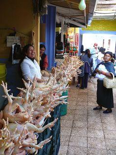 The Chickens of Otavalo | por frank3.0 Ecuador.