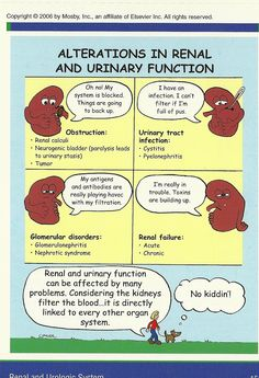 alterations in renal and kidney