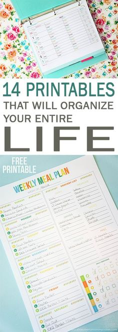 14 Free Printables that will Organize Your Entire Life