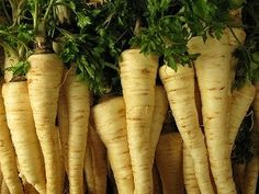 Healthy Benefits Of Consuming Parsley Root - Recipe - The Wellmindness Parsley Recipes, Chicken Parmesan Recipes, Easy Tailgate Food, Root Recipe, Healthy Christmas Recipes, Dinner Sandwiches, Weightwatchers Recipes, Finger Food Appetizers, Vegetarian Recipes Dinner