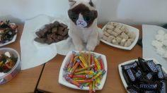 Grumpy LDLC fête l'anniversaire de ses collègues à LDLC