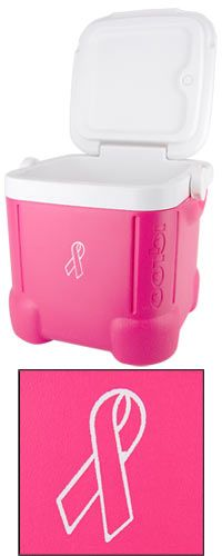 Igloo®  14 Can Pink Ribbon Ice Cube™ at The Breast Cancer Site