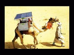 dromadaire a energie solaire, publiée le 28 Mars 2011