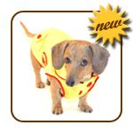 love this doxie-specific site! doxie coats!  http://www.noodleandfriends.com