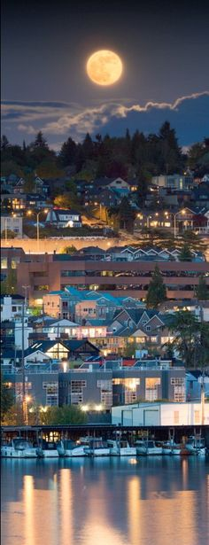 Full moon over Seattle, Washington • photo: Nicole S. Young