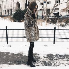a s h l e y b r o o k e + leopard coat