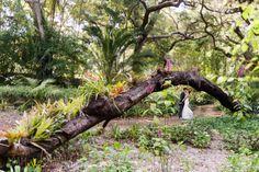 May 25th El Mirador Estate Wedding