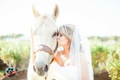 Love this horse with the bride out at Wishing Well Barn  #makeyourweddingrad #weddingphoto #weddingphotography #tampaweddingphotographer #tampaphotographer #floridawedding #radred #brideportraits #bridalportraits #bride #tampaweddingphoto #tampaweddingphotography #wppi #ppa
