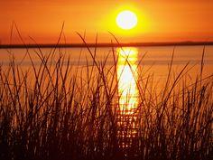 Vista pajonal, #Argentina  #ArgentinaEsTuMundo #colour #orange #naranja #Argentina #sun #viajes #VeranoEnArgentina  Más info en http://www.facebook.com/viajaportupais