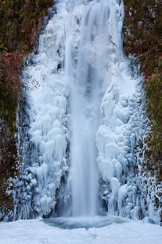 Frozen Multnomah Falls ~ Pacific Northwest