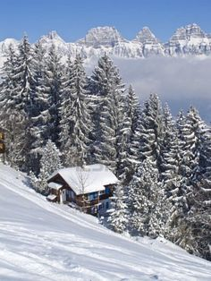 Winter Holiday in the Swiss Alps