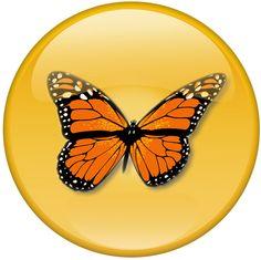 The Gorgeous Darwin logo Recruitment Software, Darwin, Logo, Logos, Environmental Print