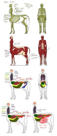 Centaurs They Work by squidlifecrisis.deviantart.com on @deviantART