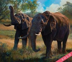They Never Forget by Julie Bell. Original fine art oil painting featuring elephants by award winning artist Julie Bell. Prints available. Elephant Images, Elephant Love, Elephant Art, African Elephant, African Animals, Elephant Paintings, Julie Bell, Boris Vallejo, Wildlife Paintings