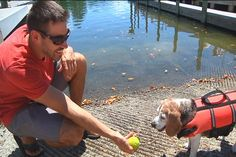 Boater treats students who rescued his overboard pup - Despite the traumatic experience Soco still loves the water and is ready to head back out at the waterfront. - Courtney's friend Nick & his dog Soco