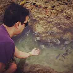 Eu poderia estar alimentando peixes, mas não estou. Se eles morrem vou ficar com peso na consciencia - @viniciusyamada   Webstagram