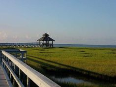 Port Lavaca, TX : Lighthouse Beach Bird Sanctuary