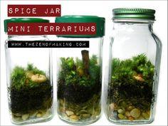 Tutorial: Spice Jar Mini Terrariums | The Zen of Making