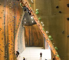 Lead Climbing 12 Lead Climbing, Indoor Climbing, Climbing Wall, Bouldering, This Is Us, Walls, Action, Gym, Building