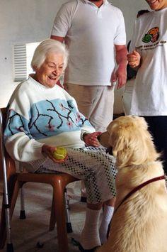 Cão com idosa na TAA