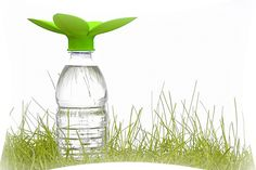 Cute portable way to collect rainwater: Petal Drops Rain Catcher by Quirky Products