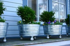 Galvanized tubs.. if you want some color, rub the outside of the tubs with white vinegar to remove chemical coating then spray paint your favorite colors!  Oh.. and add some ball feet!     Then add a SIP system in the bottom and you have the best of both worlds.