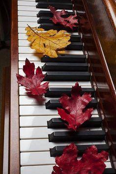 piano 4 ever