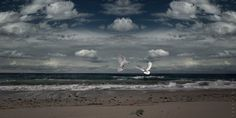 Photo S, My Photos, Clouds, Outdoor, Outdoors, Outdoor Games, Outdoor Life, Cloud