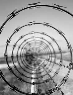 Spirals: in this picture it shows DOF as well as a small aperture blurring out the surroundings focusing only on the barbed wire.