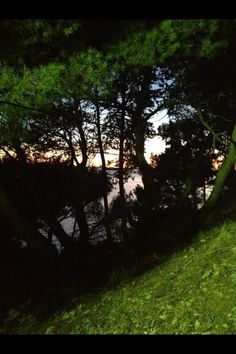 #verde #croazia #mare #sopralluoghi #e #girati  @Pal Kolndrekaj