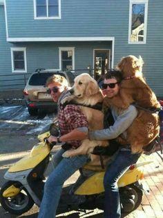 Family ride ...  CRAZY