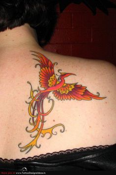 Colorful phoenix stencil Colorful phoenix tattoo on back Colorful ...