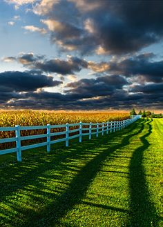 Beyond the Fence by Phil Koch - Wisconsin Horizons by Phil Koch Click on the image to enlarge. #photography #perspective #composition