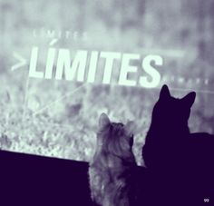 Limites by gg